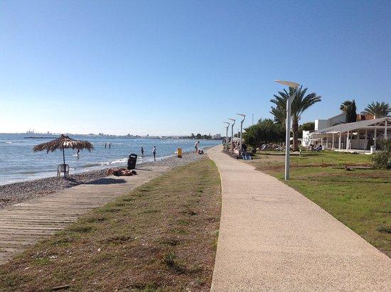 Palm beach 4 кипр ларнака отзывы
