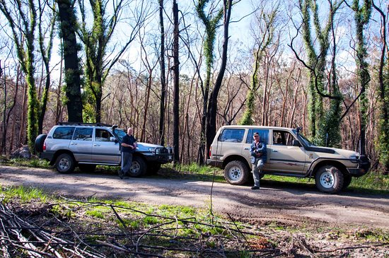 Bunyip State Park