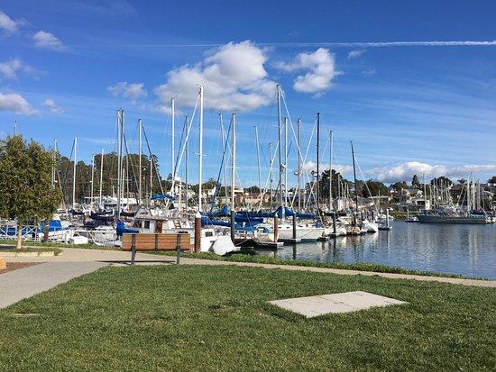 "Aldo's Harbor Restaurant: ""View from the Patio"""