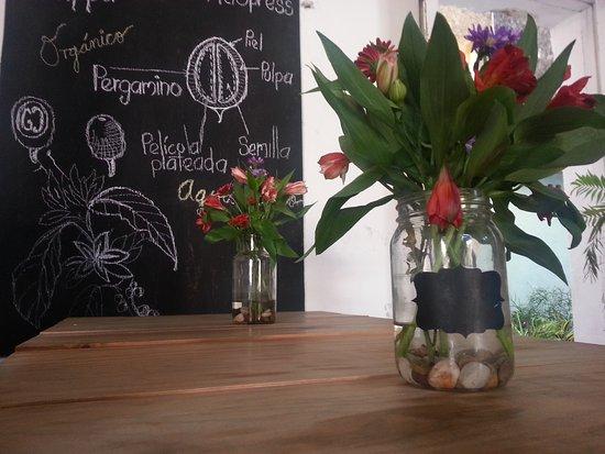 organico bar de cafe u cocina orgnico bar de caf