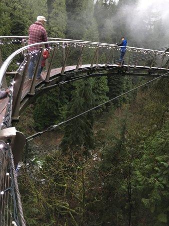 North Vancouver, Canadá: Capillano suspension bridge by night.  Beautiful