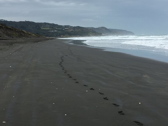 Muriwai Beach, New Zealand: photo2.jpg