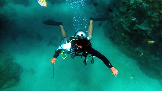 Tanjung Benoa, Indonesia: underwater