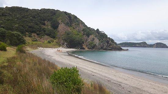 เปเฮีย, นิวซีแลนด์: Islandwalk