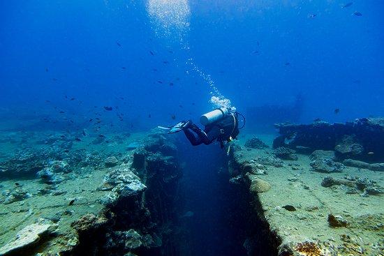 Santo Island Dive and Fishing: President Coolidge