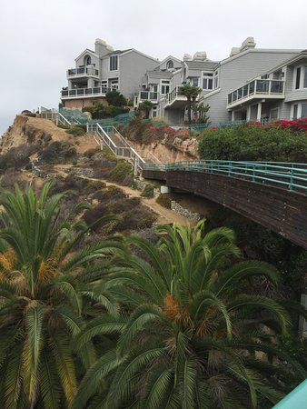 Dana Point, CA: The hillside is surprisingly lush!