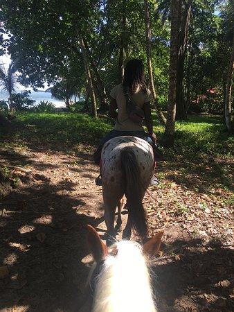 Cocles, Kosta Rika: photo3.jpg