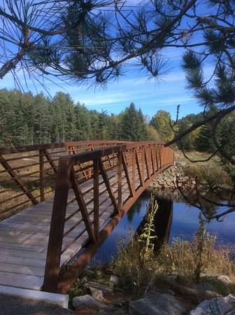 Whitney, Canadá: Spruce Bog Trail