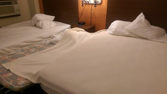 Forest Lake, MN: After showing the front desk the above pictues I was given 1 blanket for the 3 beds and a roll a