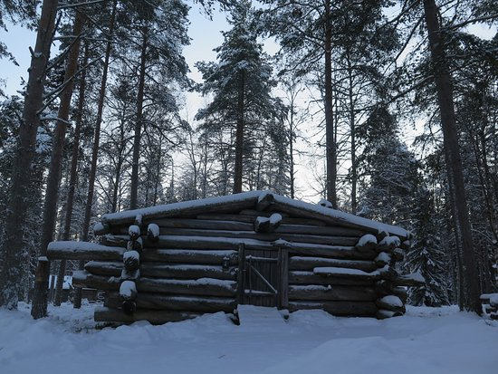 Lapland Forestry Museum: The horsemen's cabin