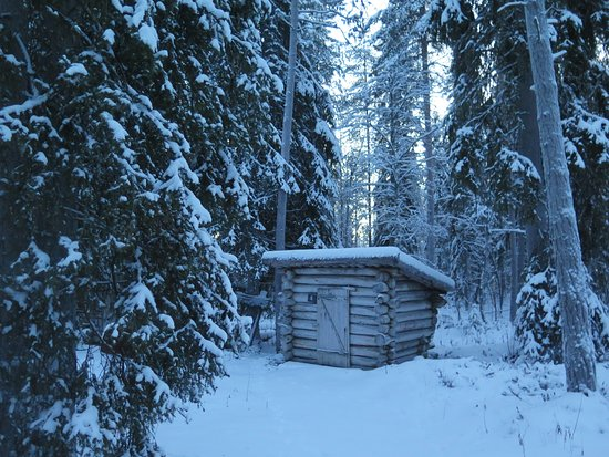 Lapland Forestry Museum: The Toilet