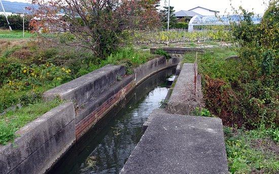 Kozumigawatoi