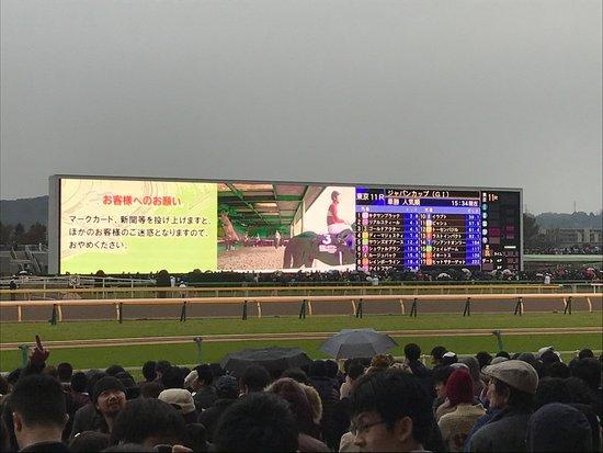 Fuchu, Giappone: Big screen