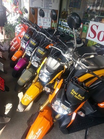 Saai Bookshop: bike rent 200 per day