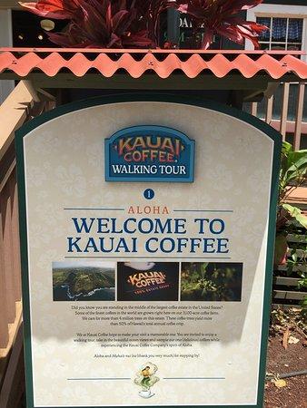 Kalaheo, HI: カウアイ コーヒー カンパニー