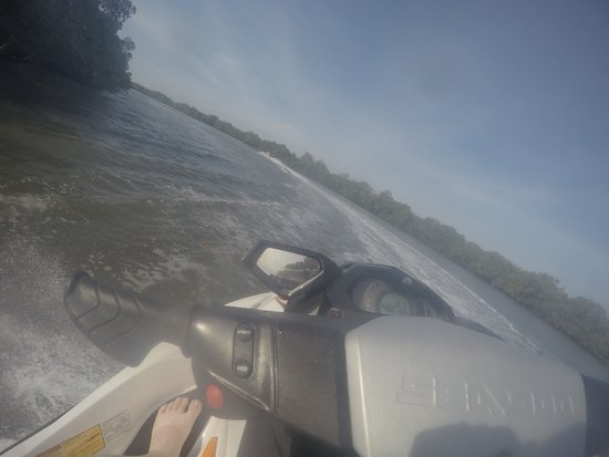 Main Beach, Australien: Cruising through the mangroves