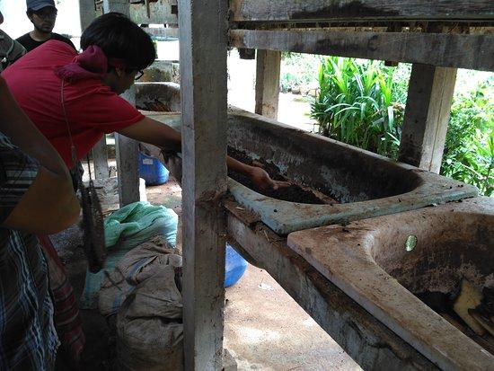 Bantul, Индонезия: IMG_20161204_125215_large.jpg