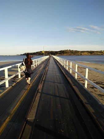 Victor Harbor, Australia: IMG20161008184658_large.jpg