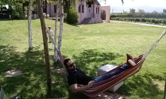 Lujan de Cuyo, Argentina: relax post almuerzo