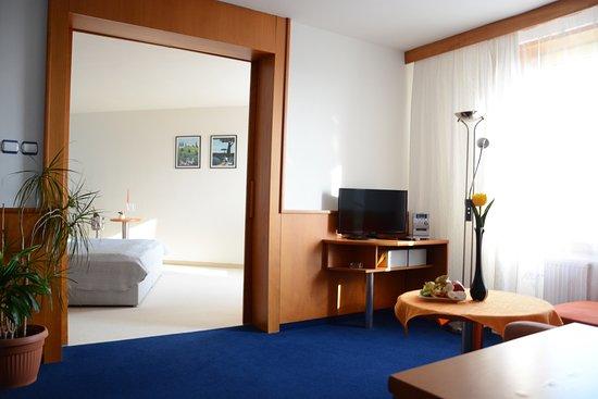 Prostejov, Czech Republic: Apartment