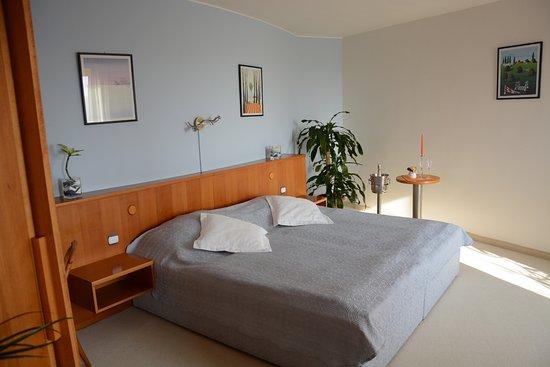 Prostejov, Czech Republic: Room