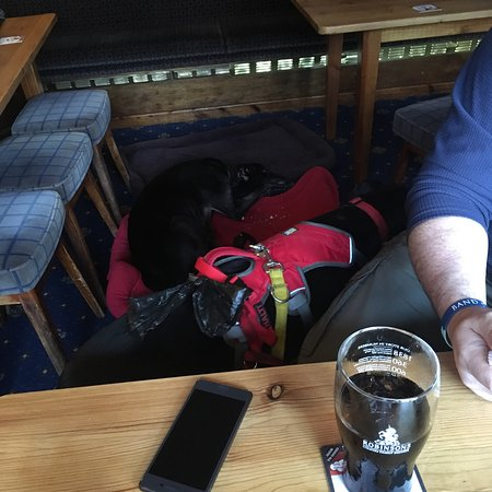 Super dog friendly 💞 after a beach walk with pooches popped into this lovely pub. Had their fis