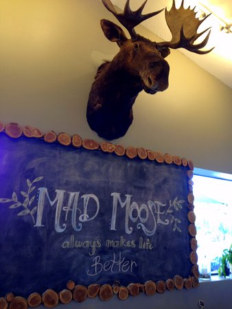Eden, UT: The resident moose. He didn't look mad to me. ha ha