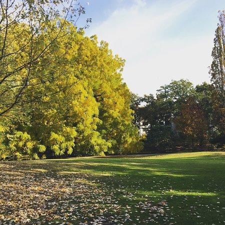 Der Herbst im Bürgerpark