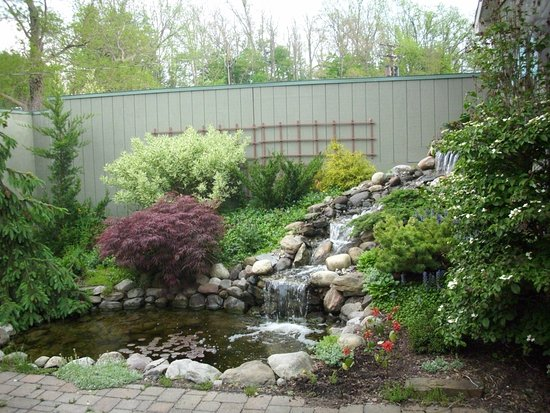 Trumansburg, NY: pond and waterfall feature by the patio