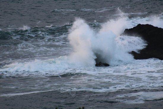 Obraz Whale Cove Inn
