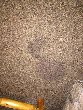 Banner Elk, Kuzey Carolina: stains on carpet