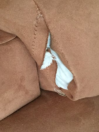 Banner Elk, Kuzey Carolina: torn/ripped sofa