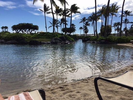 Grand Hyatt Kauai Resort & Spa: Love the saltwater lagoon! Lots of fun!
