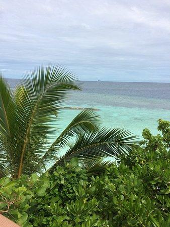 North Ari Atoll: photo4.jpg