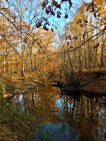 Hillsborough, NC: Beautiful river