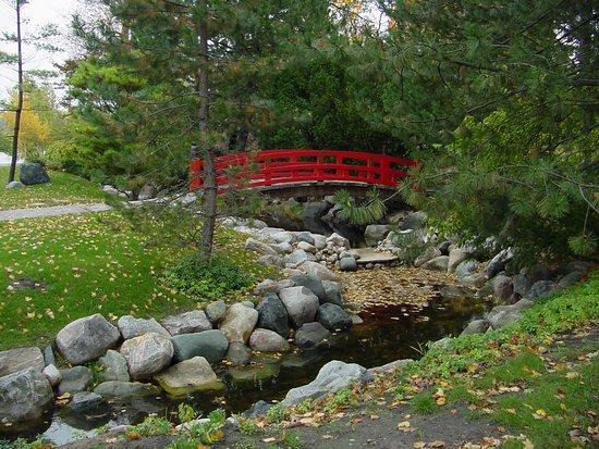 Saginaw, MI: Japanese Tea House