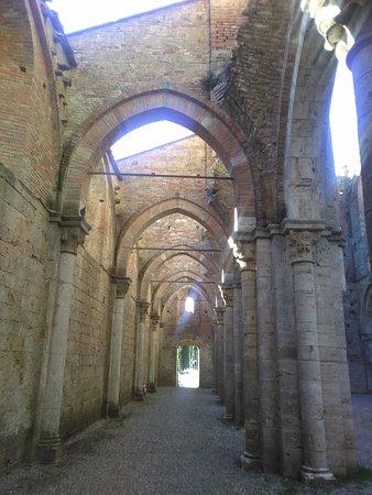 Chiusdino, Italia: IMG_20161208_135956_large.jpg