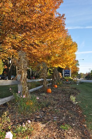 Egg Harbor, WI: Fall colors are beautiful in Door County.
