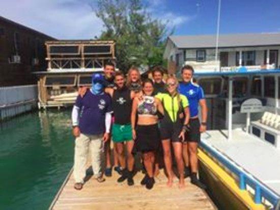 Utila, هندوراس: drift dive