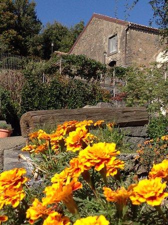 Puntalazzo, Italia: I fiori du' munti