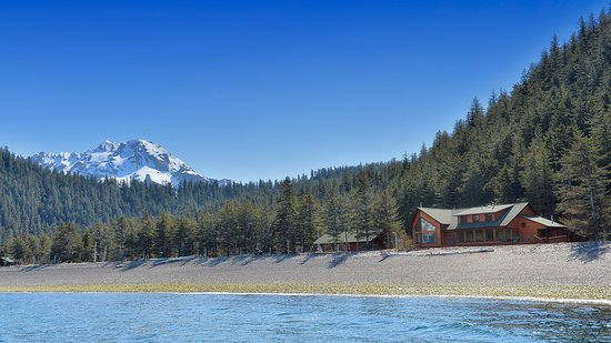 Kenai Fjords Wilderness Lodge: Wildlife can often be spotted from the lodge