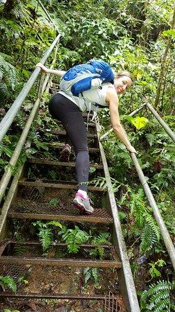 San Gerardo de Dota, Costa Rica: raggedy stairs