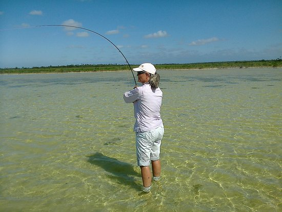 Андрос-Айленд: The gramme of the bonefish flat