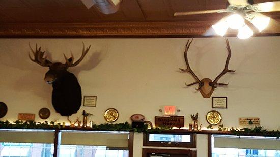 Sandusky, MI: Yep, thats a moose head!