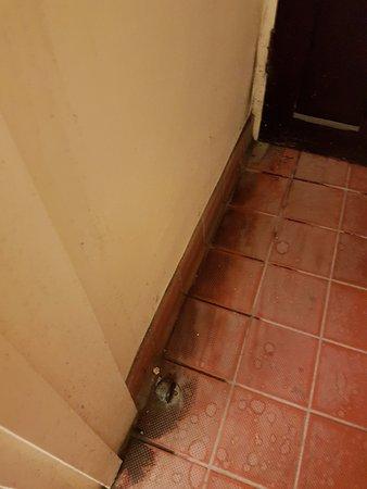 Ivybridge, UK: Dirty floor