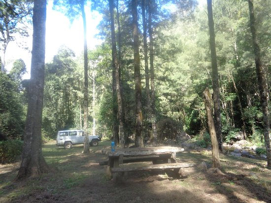Cobark, Australien: Picnic area by the river