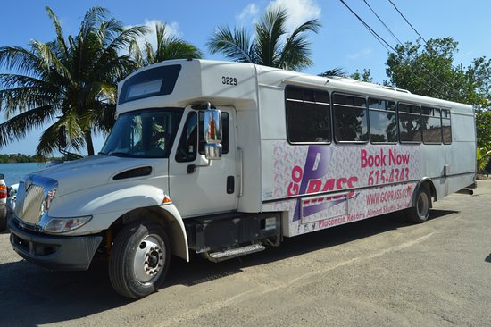 Placencia, Belize: Ride on our 2012 hybrid shuttles
