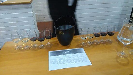 Constantia, Sudafrica: Degustação no wine tour