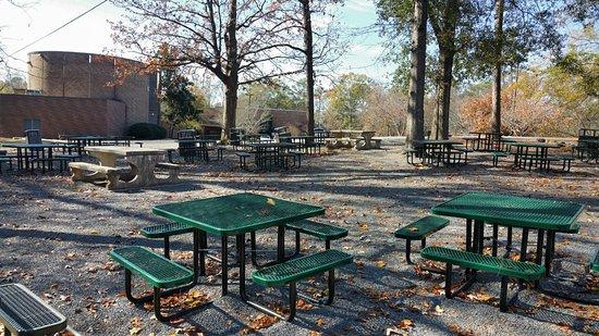 Big picnic area