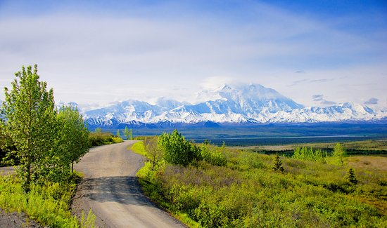 Denali Cabins: Day trips into Denali National Park on Denali Backcountry Adventure